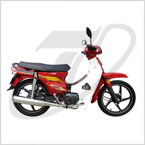 p_sym_esr110red